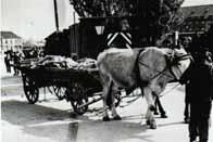 Libération du camp de Dachau