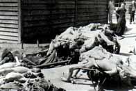 Libération du camp de Mauthausen