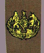 Staff sergeant major